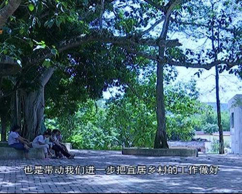 宁明县东安乡:打造可持续发展的宜...
