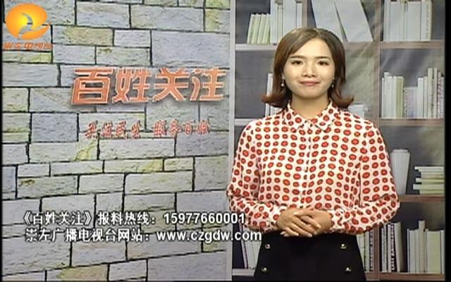 潘春会:铿锵玫瑰别样红  巾帼英...