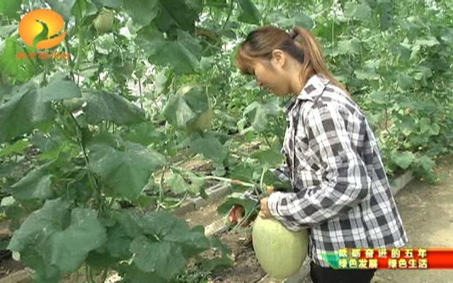 【砥砺奋进的五年·绿色发展 绿色...